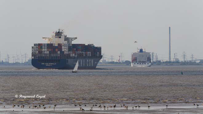 container ship river elbe voyage