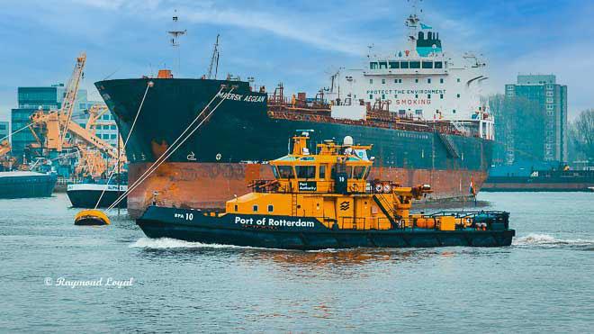 rotterdam port of rotterdam-waalhaven