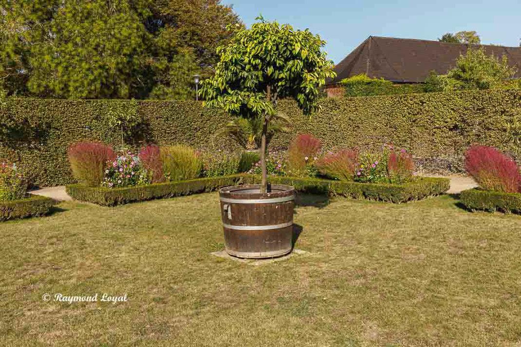 benrath palace terrace garden