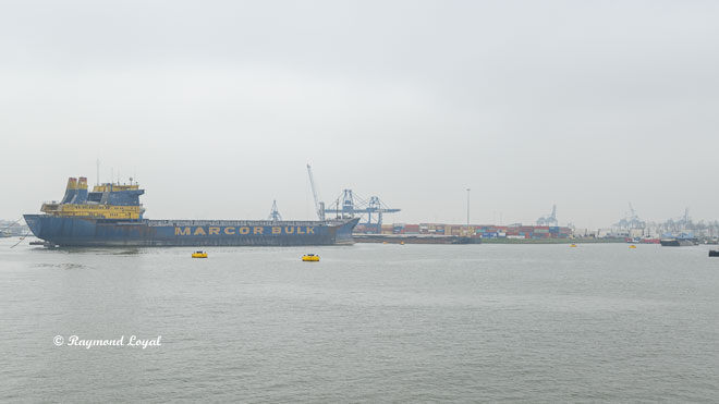 Rotterdam bulk carrier hafenbecken seehafen waalhaven