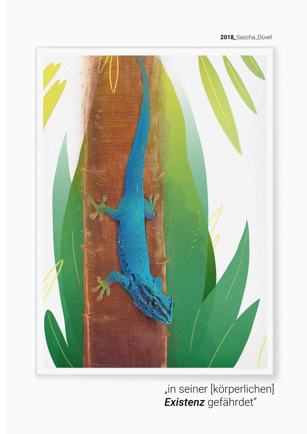 Himmelblauer Zwergtaggecko - Lygodactylus williamsi