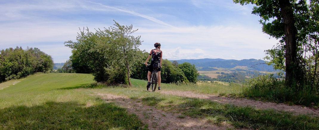 Berghuhn, Trans Bayerwald