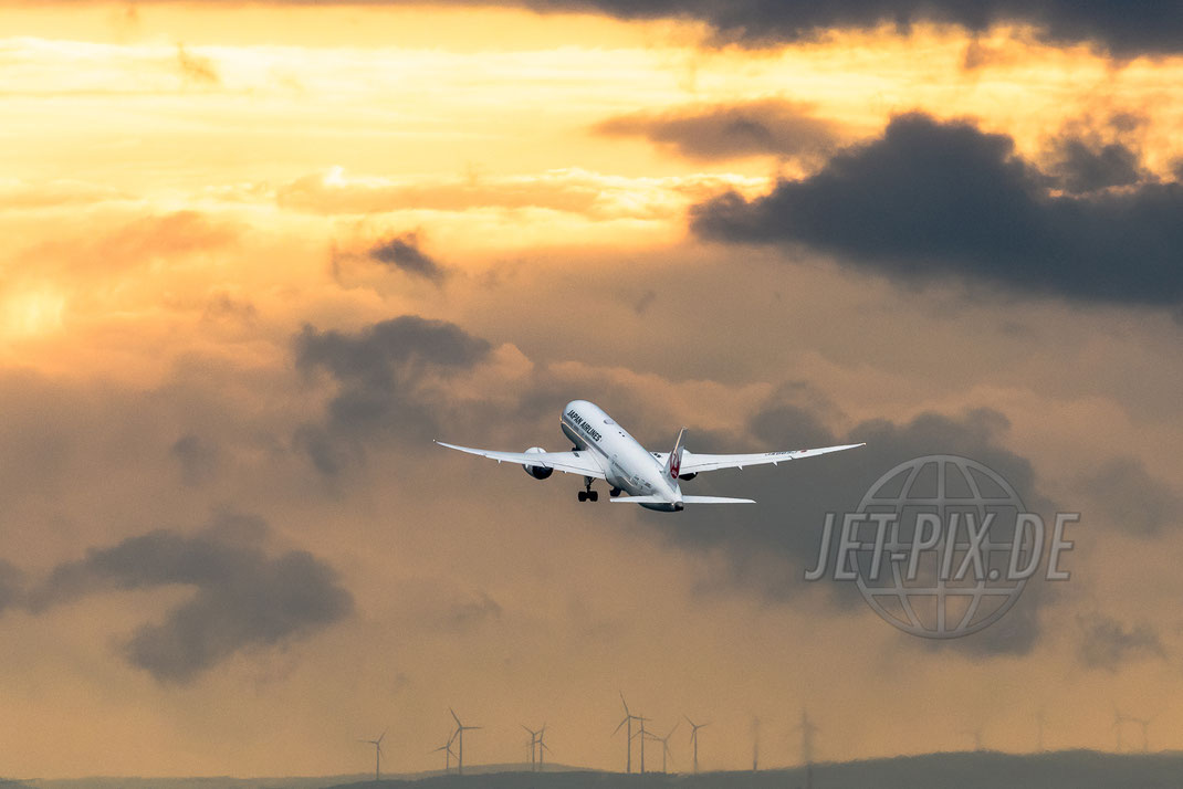 JA865J JAL Boeing 787 Dreamliner 2017 05 19 EDDF Frankfurt Spotting von der Besucherterrasse Besucherplattform Affenfelsen Frankfurt