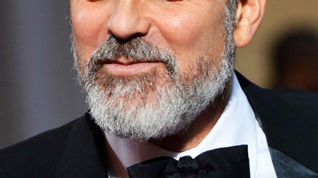 ¿Cómo cuidar una barba Canosa?