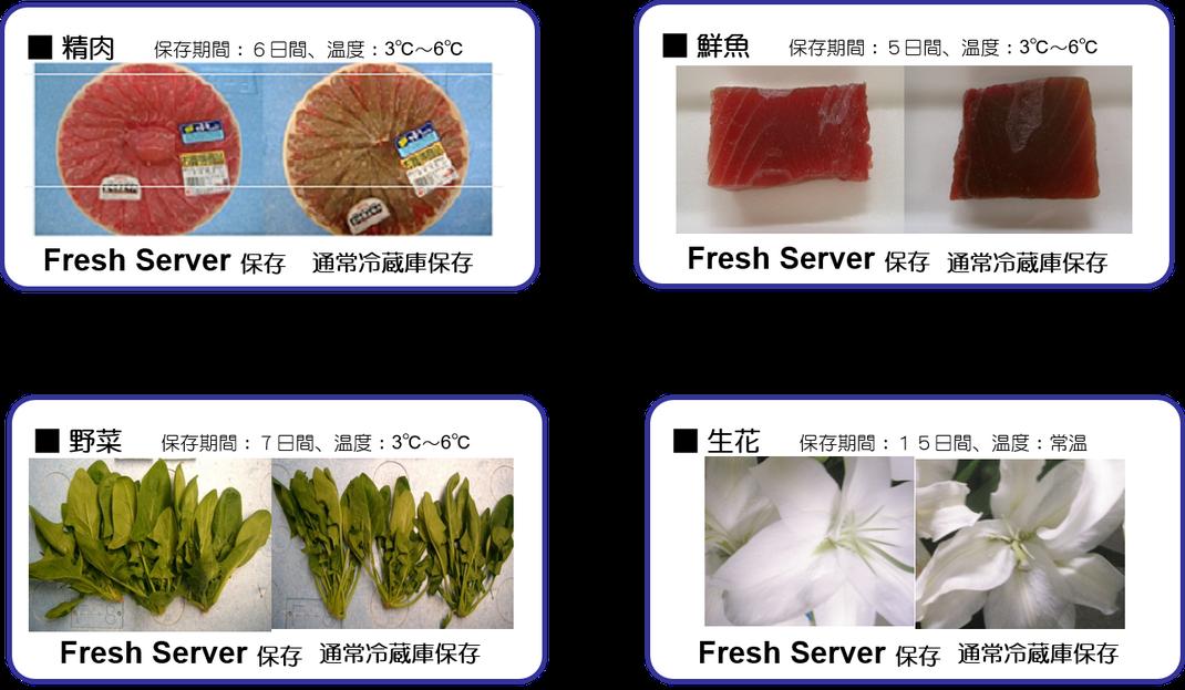 Fresh Server の鮮度保持効果(冷蔵)
