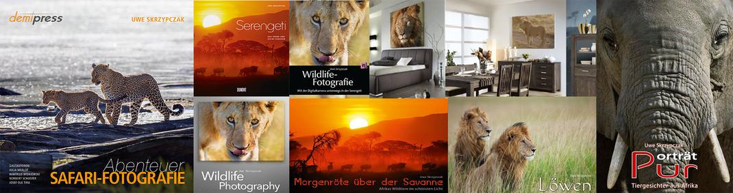 Wildlife Fotografie bei Uwe Skrzypczak