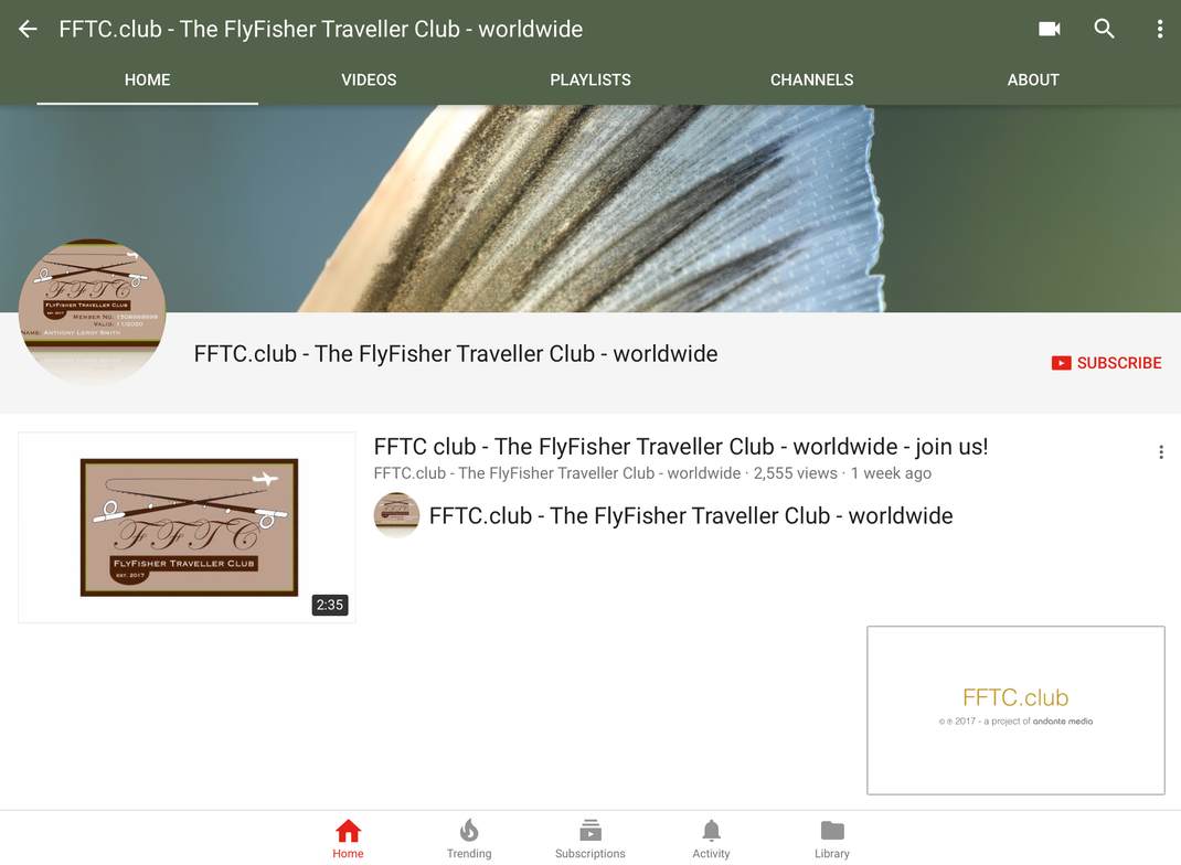 FFTC.club YouTube-Channel pic - © 2017