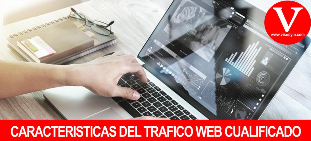 CARACTERÍSTICAS DEL TRAFICO WEB CUALIFICADO