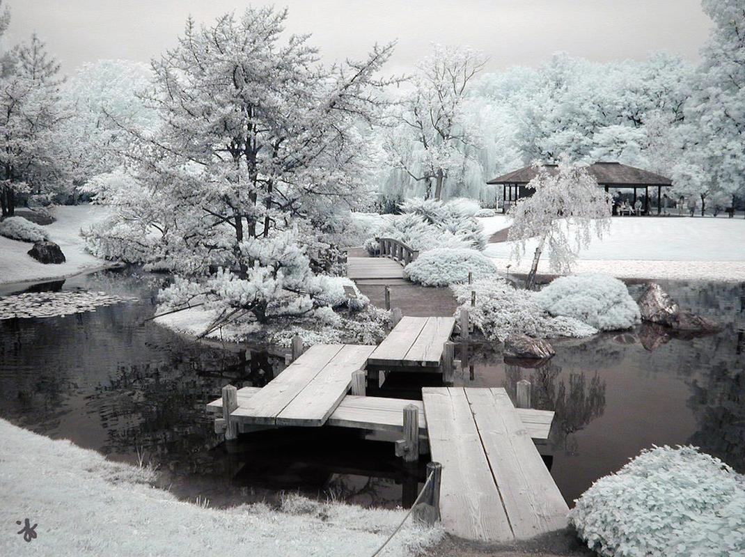 Jardin paysagiste hiver