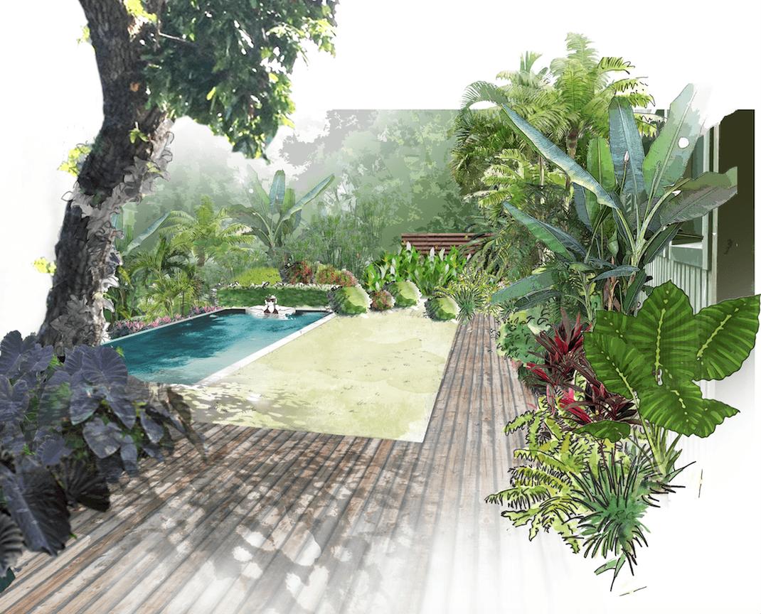 Aménagement d'un jardin tropical