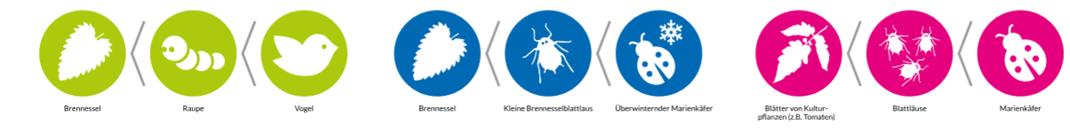 Piktogramme Nahrungsketten by 4k-s Büro für Gestaltung, Neubert und Schlottig GbR
