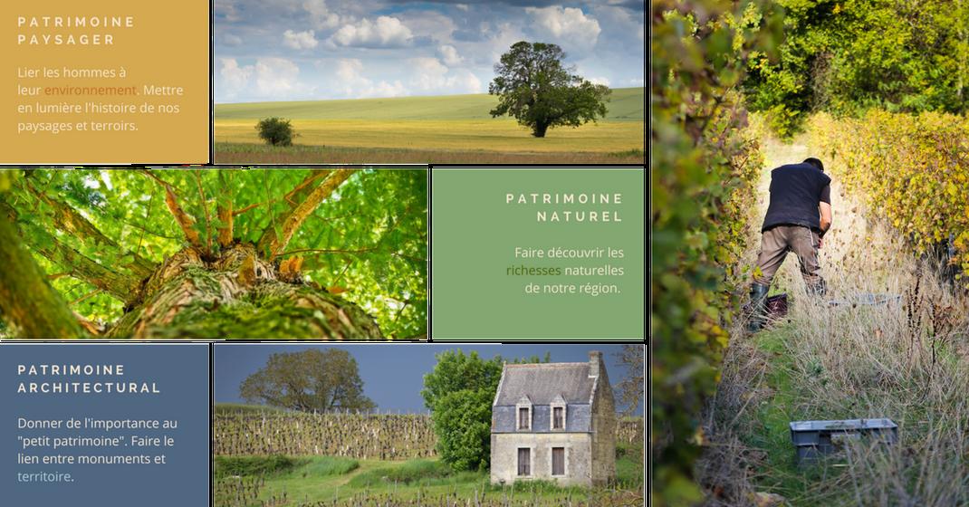 Préservation et valorisation du patrimoine en Touraine