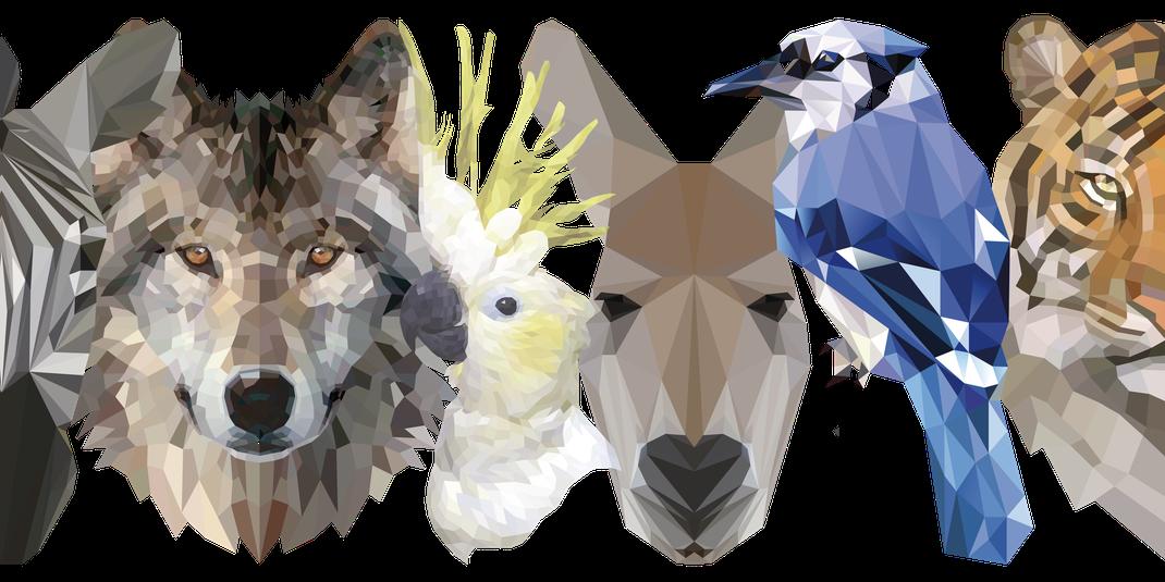 Zebra, Wolf, Kakadu, kanguru, Eisvogel, Tiger alle im polygon style grafisch dargestellt
