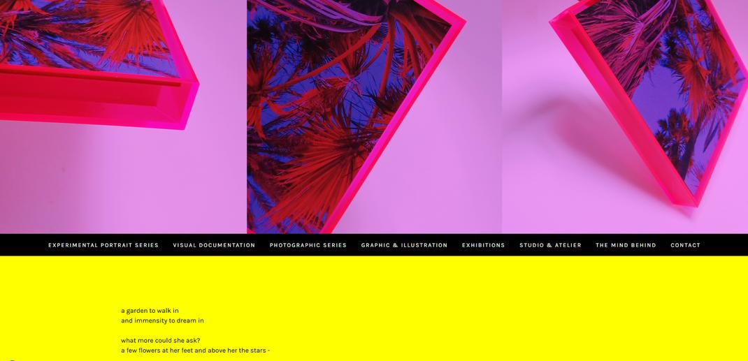 webseiten design gestaltung webdesign sinsheim künstlerisch anspruchsvoll wertig laura deberle bild&grafik kreativ kunst sinsheim heidelberg mannheim delta rhein-neckar kunstwerke shooting