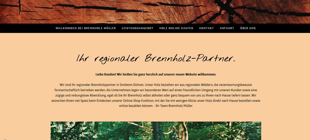 webdesign webseite gestalten profi sinsheim heidelberg umgebung beste adresse webseitendesign design web online bild&grafik webdesigner