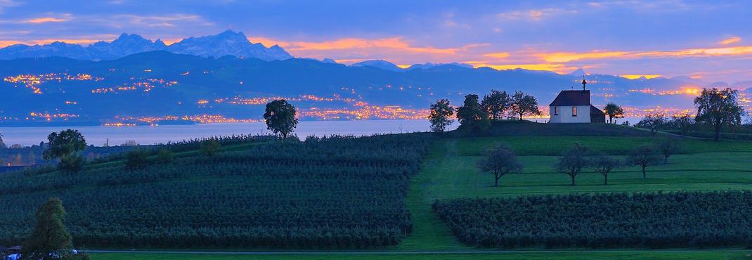 Die liebliche Bodensee Landschaft. Hier wachsen im sonnenverwöhnten Klima unsere besonderen Birnen, Äpfel, Kirschen und Zwetschgen für den Obstbrand.