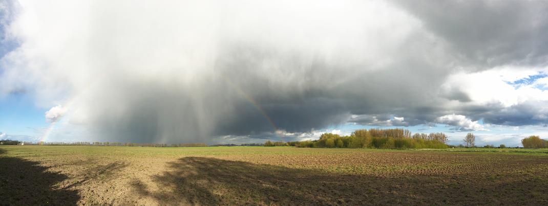 Regenbogen, Oderland, Oderbruch, (c) Oderbruch-blog.de