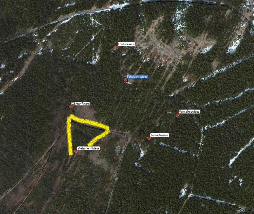 Rauensteiner Heuwiesen am Kleinen Mittelberg im oberen Poppengrund, gelbe Markierung zeigt die Umrisse der ehem. Welschenwiese, Frühjahr 2016
