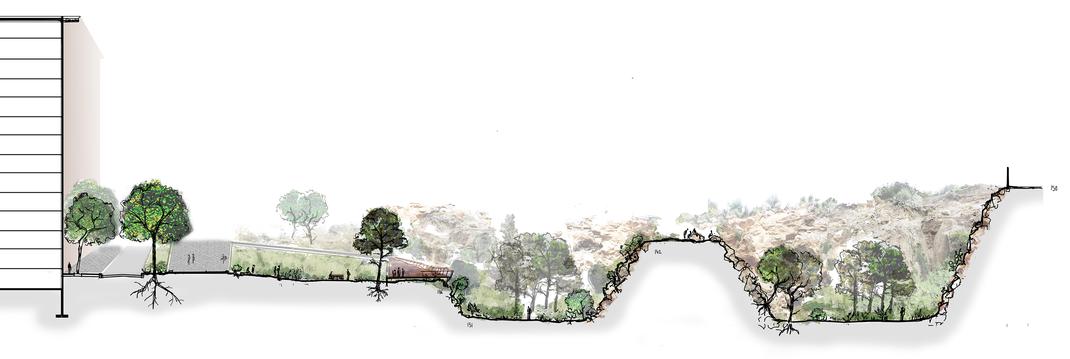 // Coupe du jardin, topographie vertigineuse, espace de promenade et de contemplation.