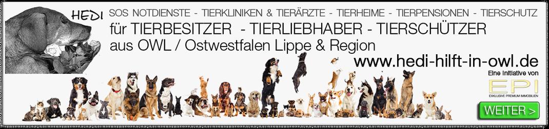 Tierklinik Bielefeld Ostwestfalen Lippe OWL Tierkliniken Tierärzte Tiernotdienste Tiernothilfe Tierschutz Tierheime Tierpensionen