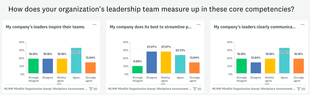Mindful Organization & Workplace Assessment (MOWA) Version 2: Selection of Company Leadership Results ~ 4/23/21