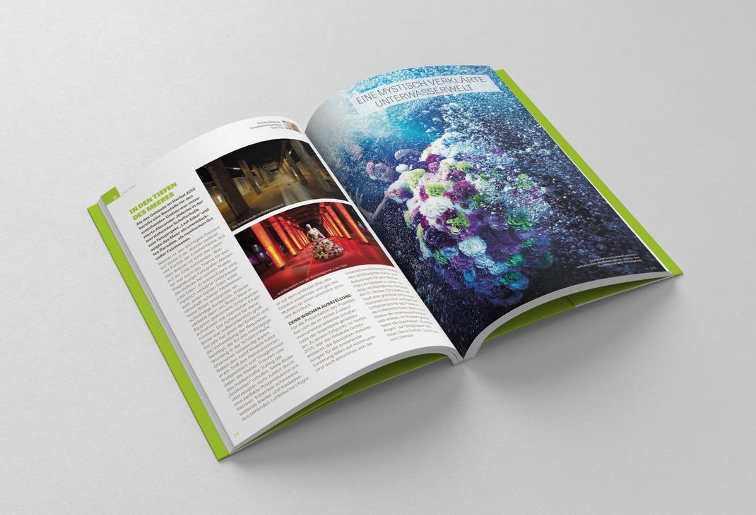 Gestaltung – Broschüre