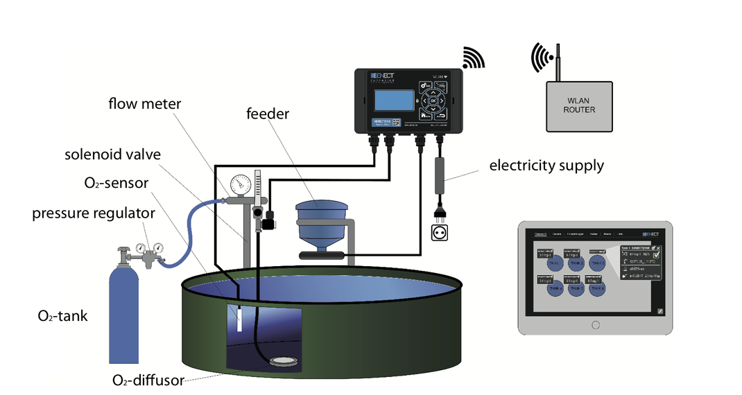 Setup for optimum feed control in aquaculture production systems featuring the SENECT|TWO control unit in combination with oxygen control and an automatic feeding unit. All relevant parameters (e.g. feeding amount) can be adjusted via tablet/ mobile phone