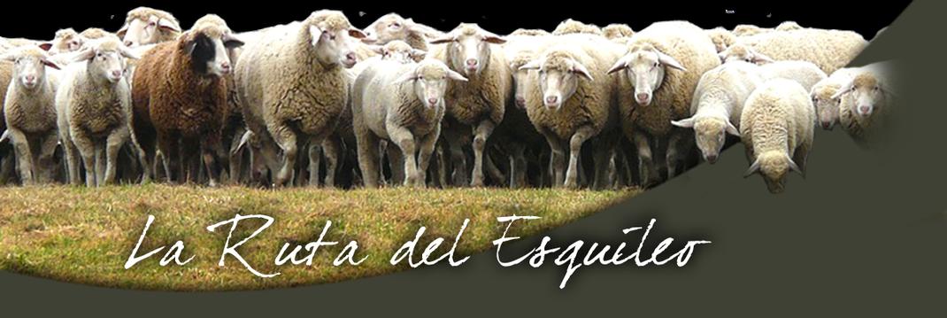 La Ruta del Esquileo en Segovia