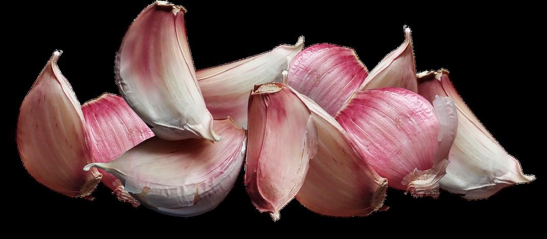 Knoblauch,Alho,Garlic,Martins Kulinarium,Carvoeiro,Algarve,Portugal,Mobile Kochschule