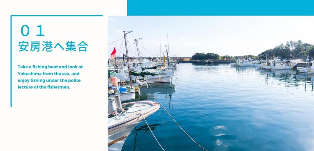 安房港へ集合,屋久島くろしおクルーズ,釣って、さばいて、美味しい体験。うお泊やくしま,体験ツアープログラム!,SDGs,サスティナブル,ESD,エコツーリズム,キャンプ体験