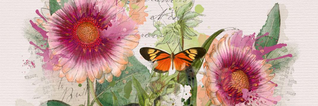 Florale Motive, Aquarel auf Papier und als Postkarte gibt es in der Galerie Frutti dell'Arte auf der Aachener Kunstroute 2015