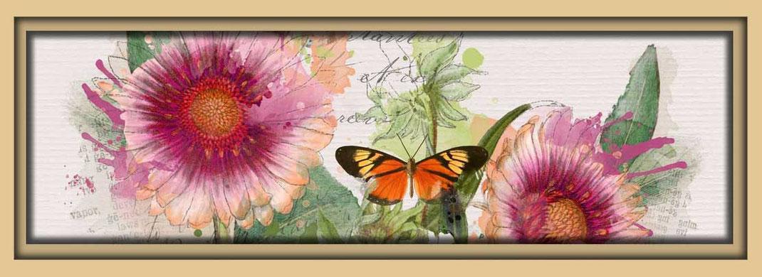 Bilder aus dem Garten der Galerie Frutti dell'Arte während der Aachener Kunstroute 2015. Postkarten mit floralen Motiven.
