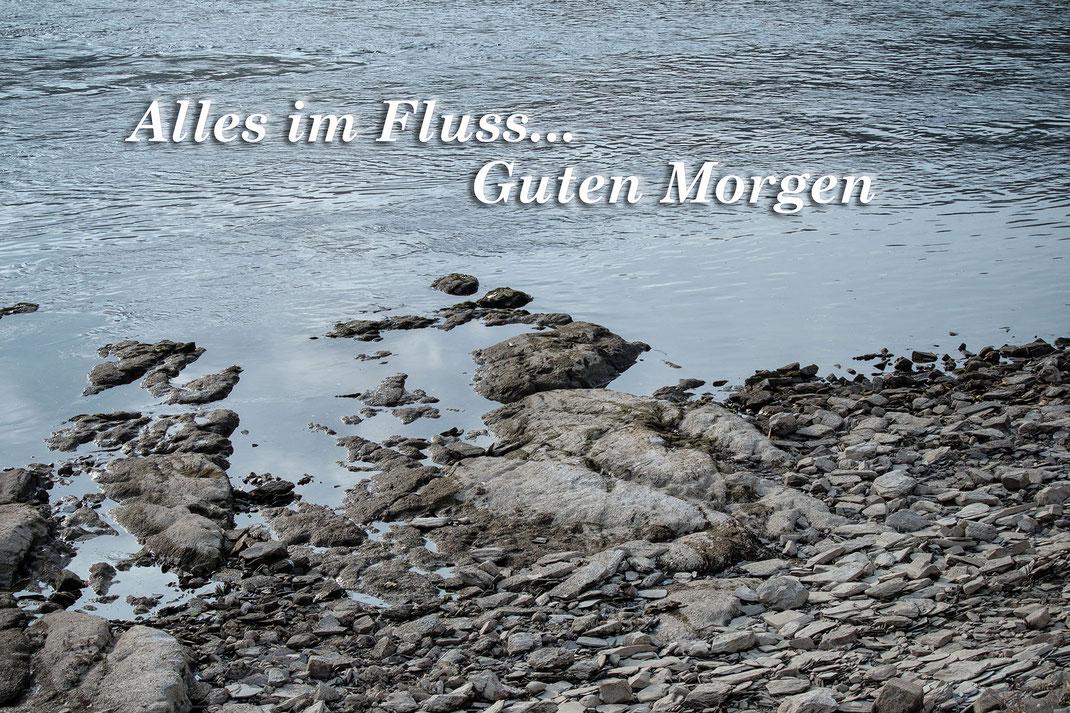 """Guten Morgen Grusskarte """"Alles im Fluss"""". Graubraune Steine am Rheinufer ragen ins Wasser"""