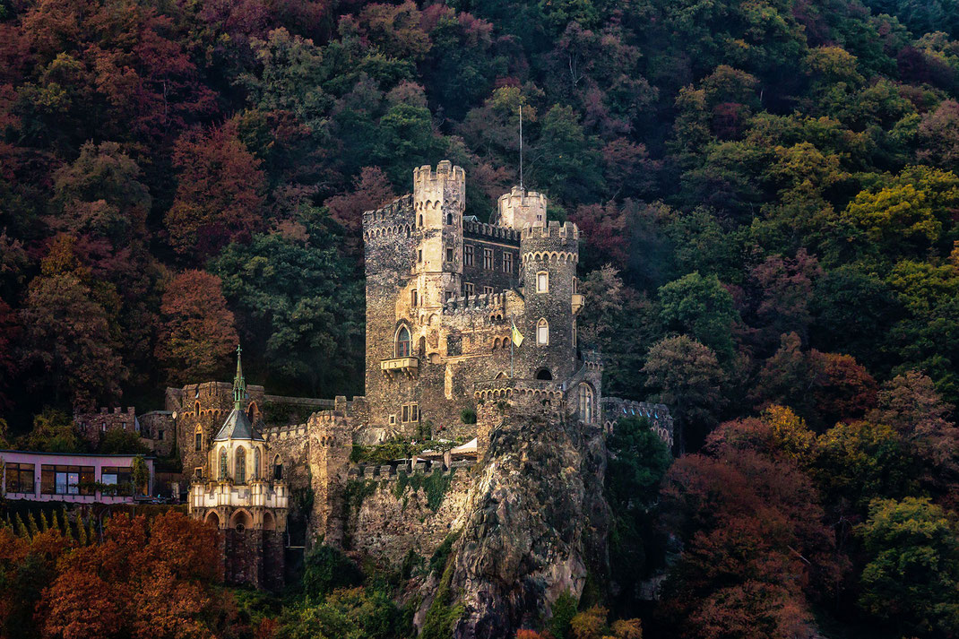 Burg Rheinstein im Mittelrheintal umringt von herbstlich bunt gefärbten Bäumen - Fotos kostenlos und lizensfrei © Jutta M. Jenning www.mjpics.de