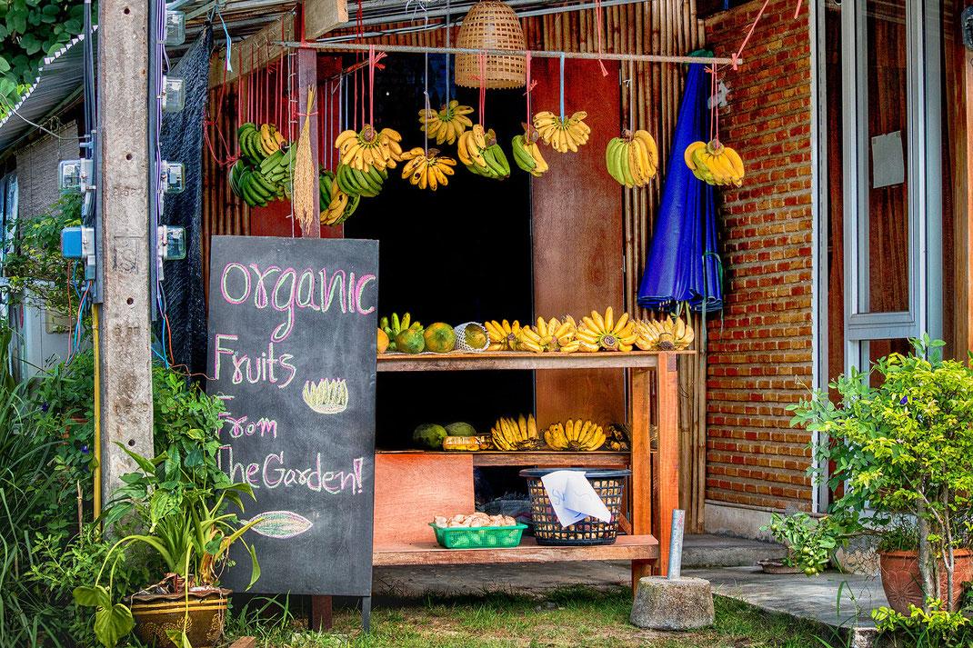 typischer-obststand-auf-thailands-inseln-koh-phangan