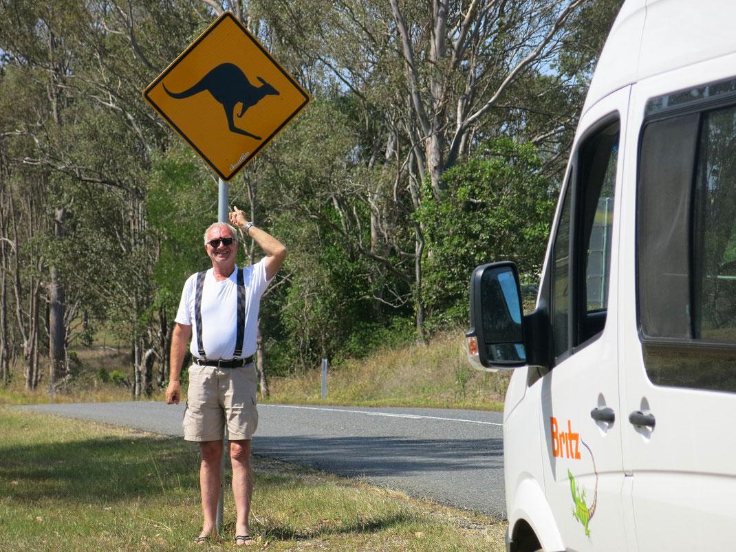 Vanlife in Australien: Über blaue Berge, einsame Strände, Kängurus & die besten Austern der Welt