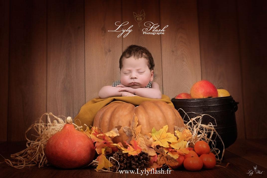 Photographe naissance bébé halloween