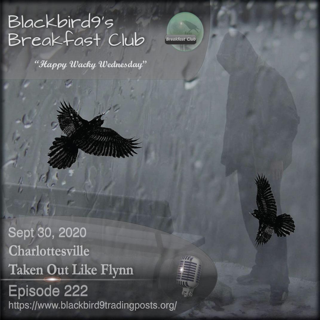 Charlottesville Taken Out Like Flynn - Blackbird9