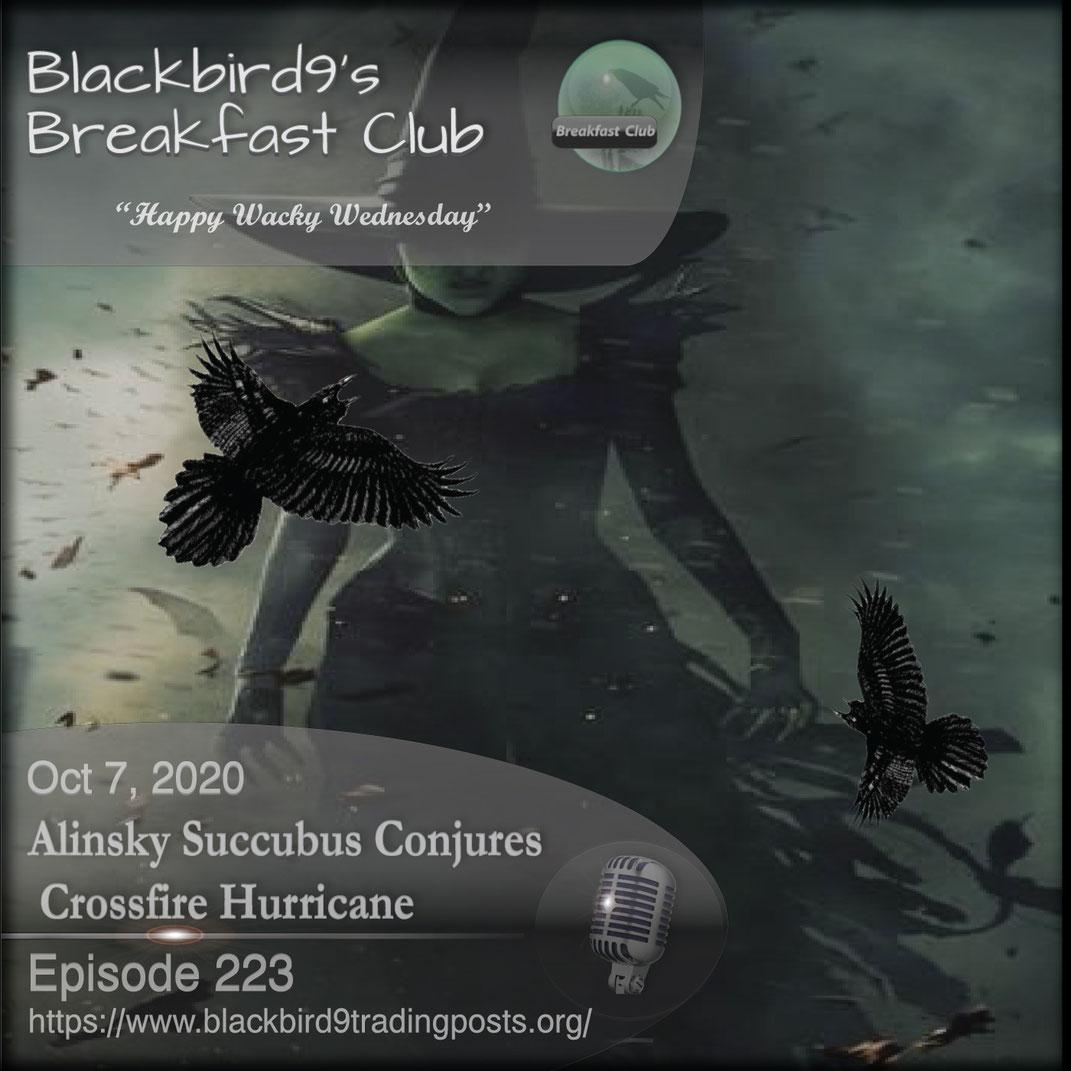 Alinsky Succubus Conjures Crossfire Hurricane - Blackbird9