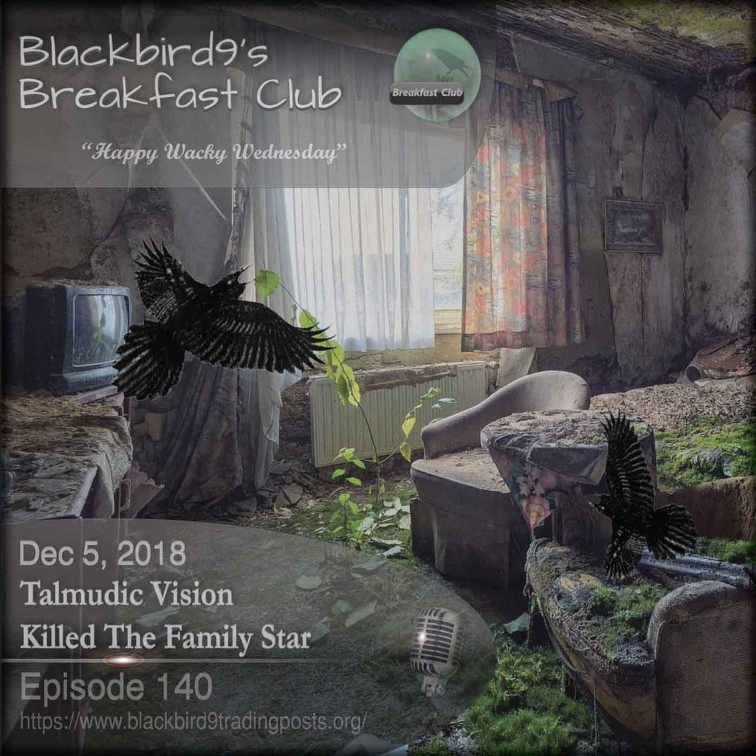 Talmudic Vision Killed The Family Star - Blackbird9