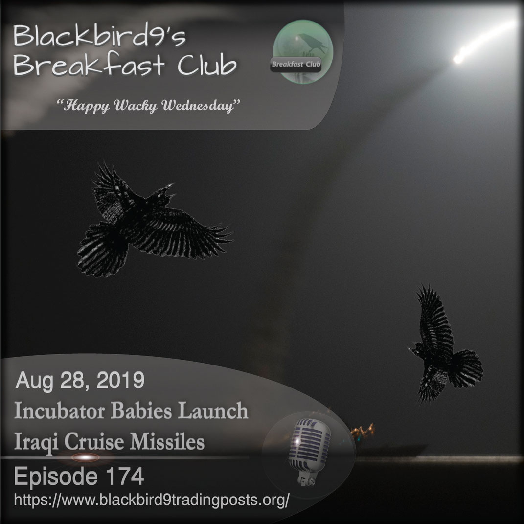 Incubator Babies Launch Iraqi Cruise Missiles - Blackbird9