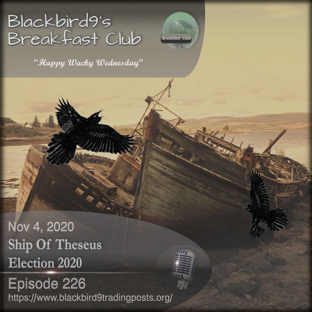 Ship Of Theseus Election 2020 - Blackbird9