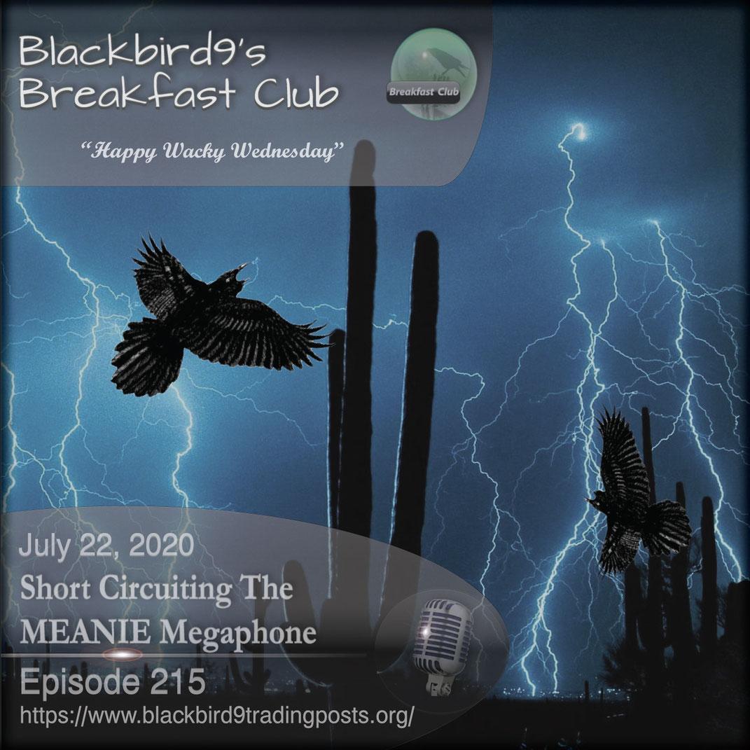 Short Circuiting The MEANIE Megaphone - Blackbird9