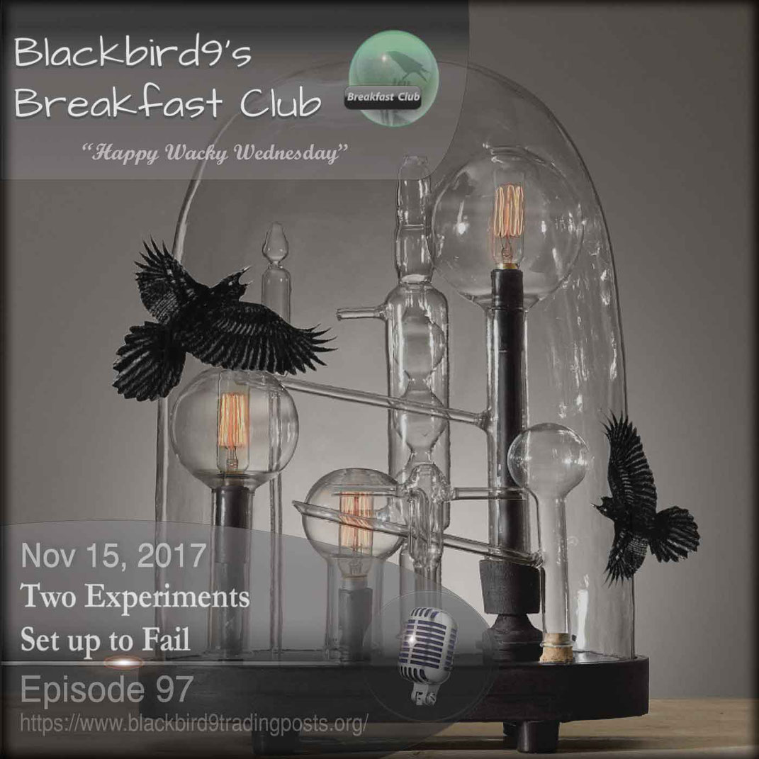 Two Experiments Set up to Fail - Blackbird9
