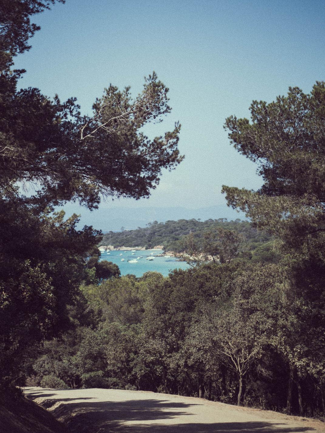 Sud France - Porquerolles