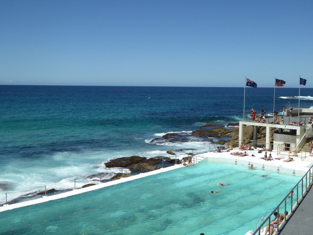 Iceberg Swimming Club, Sydney