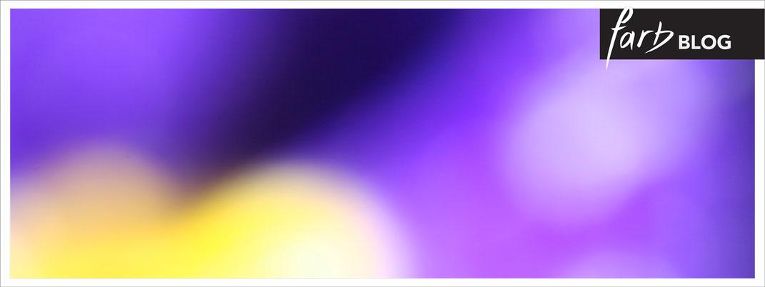 Möbel in Violett