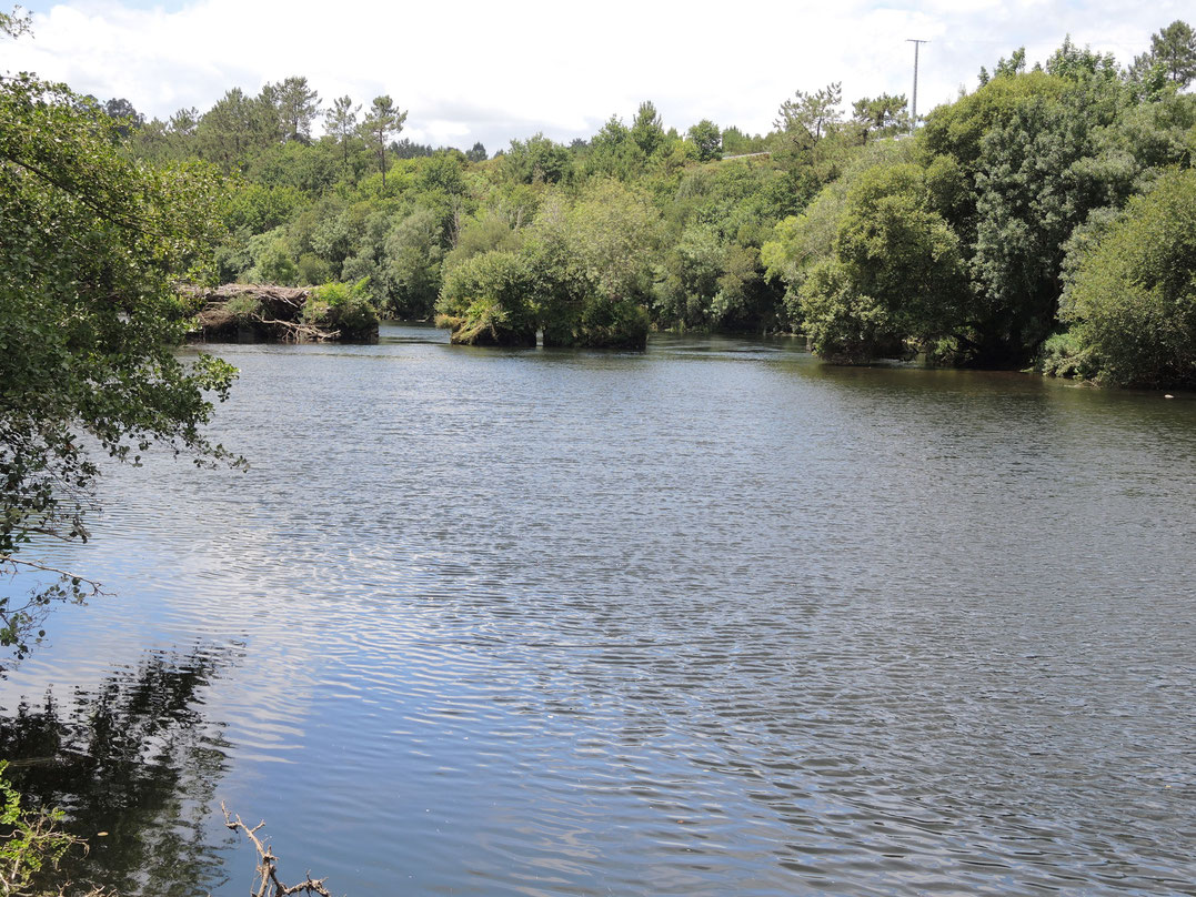Rio Ulla bei Herbon.