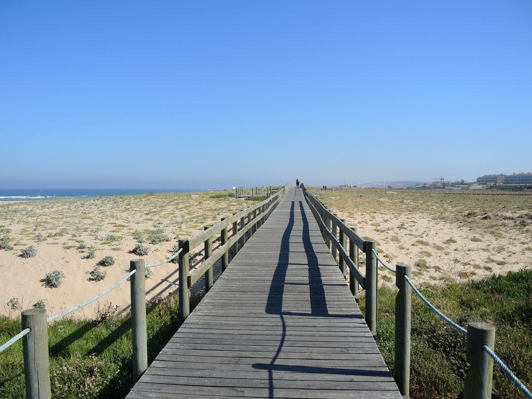 Die Holzstege sint typisch für portugiesische Atlantikküste. Sie führen oft über 10 km am Strand entlang.