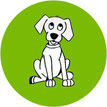 Dirofilaria Immitis bei Hunden